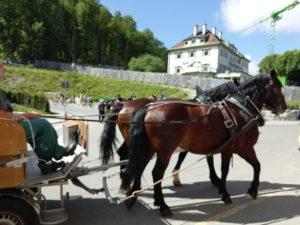 天鵝堡馬車