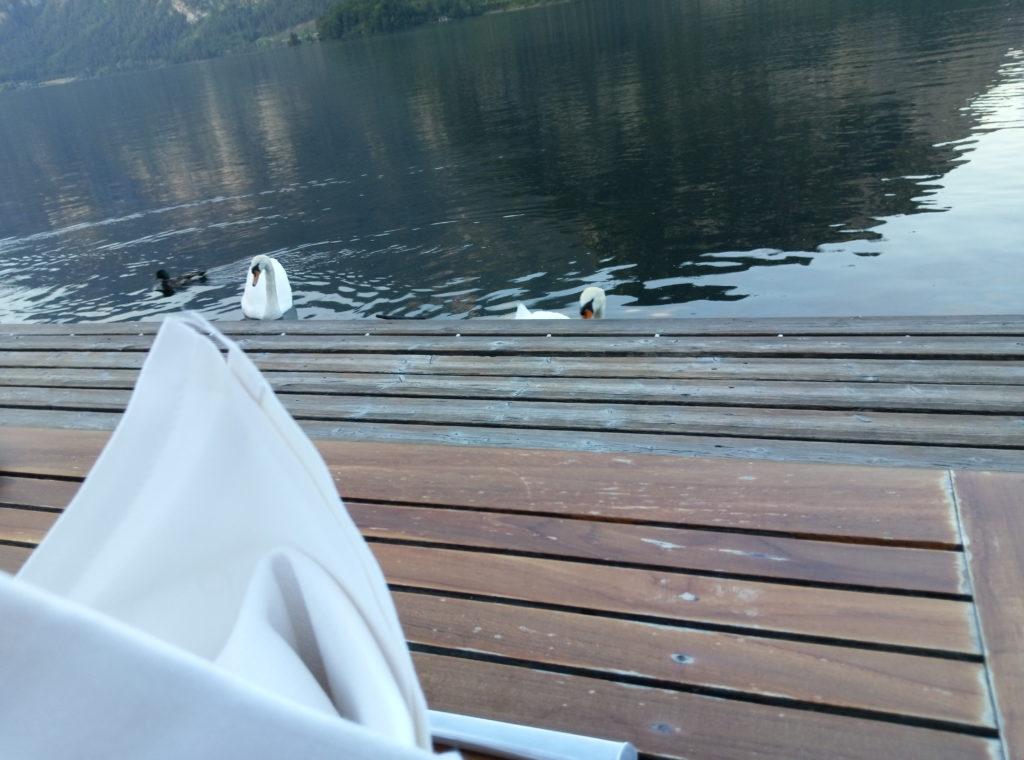 Restaurant im Seehotel Gruner Baum